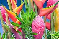 Tropical flower arrangement. Heliconia and ginger. Kauai, Hawaii