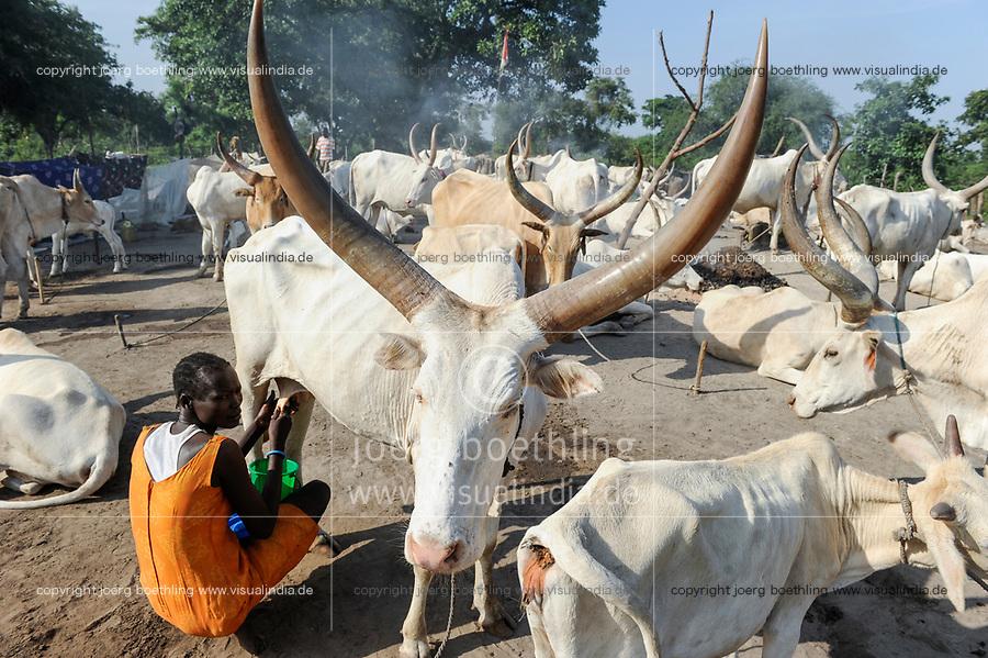 SOUTH SUDAN Bahr al Ghazal region , Lakes State, village Yeri cattle camp near Rumbek, Dinka woman milking Zebu cow / SUED-SUDAN  Bahr el Ghazal region , Lakes State, Dorf Yeri, Dinka mit Zebu Rindern im cattle camp bei Rumbek , Frau beim Melken