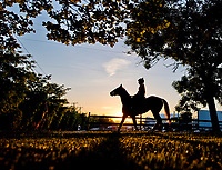 BALTIMORE, MD - MAY 17:  A horses heads to the track as preparations ramp up for the Preakness Stakes this Saturday at Pimlico Race Course on May 17, 2017 in Baltimore, Maryland.(Photo by Scott Serio/Eclipse Sportswire/Getty Images)