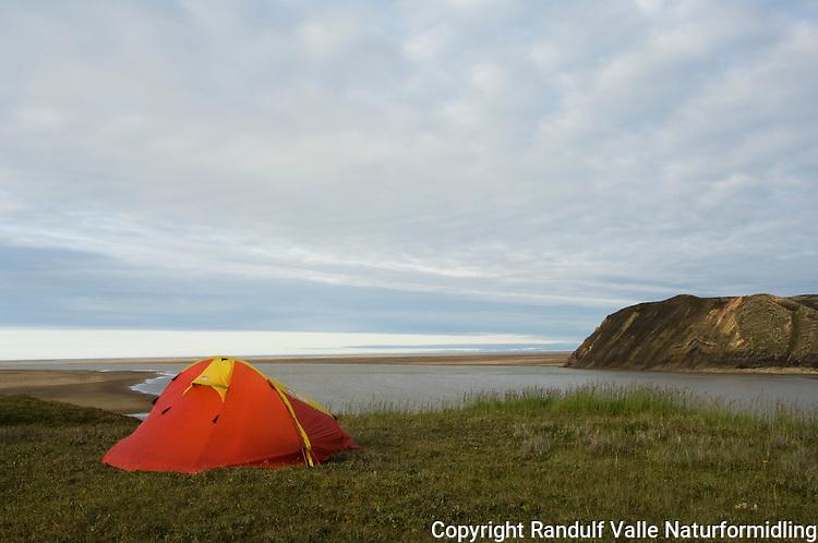 Telt på grasslette, der Horton River renner ut i sjøen. ---- Tent on grass plain at the end of Horton River.