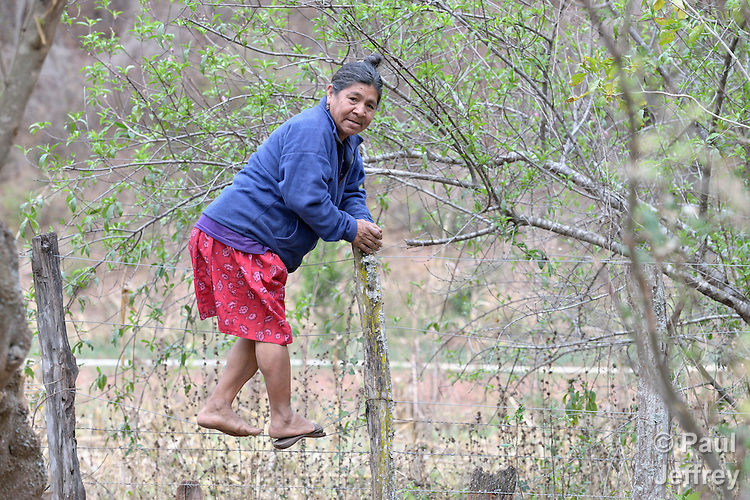 Edulia Vaquera, a Guarani indigenous woman in the village of Kapiguasuti, Bolivia, climbs over a fence to her garden. She and her neighbors started small gardens with assistance from Church World Service, supplementing their corn-based diet with nutritious vegetables and fruits.