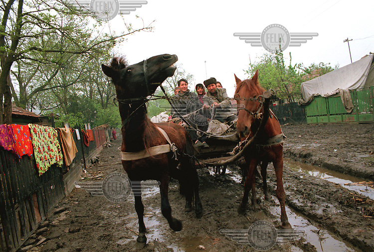 Gypsy villagers returning home, Sarulesti, Romania.April 2000.© Karen Robinson / Panos Pictures