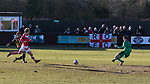 Rushall Olympic 1 Workingon 0, 17/02/2018. Dales Lane, Northern Premier League Premier Division. Goal scored by Danny Waldron of Rushall. Photo by Paul Thompson.