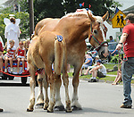 Seen along Washington Avenue section of the route of the Annual July 4th Parade in Saugerties, NY, on Wednesday, June 4, 2012. Photograph taken by Jim Peppler. Copyright Jim Peppler/2012