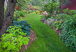 Vashon-Maury Island, WA: Perennial garden in late spring with grass pathway featuring bleeding heart, hostas, rhododendrons and poppies blooming.