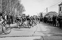 60th E3 Harelbeke (1.UWT)<br /> 1day race: Harelbeke › Harelbeke - BEL (206km)