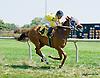 She'ssocalifornia winning at Delaware Park on 8/27/14