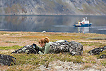A student photographing the macro world of   Tasermiut Fjord in Greenland. The student is part of the Cape Farewell Youth Expedition that was organized by the British Council of Canada.