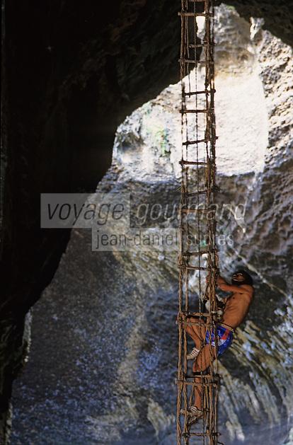 Asie/Malaisie/Env de Sandakan: Grottes de Gomatong - Récolte des nids d'hirondelle