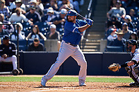 Toronto Blue Jays Rowdy Tellez (44) bats during a Spring Training game against the New York Yankees on February 22, 2020 at the George M. Steinbrenner Field in Tampa, Florida.  (Mike Janes/Four Seam Images)