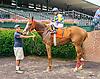 Starshiner winning at Delaware Park on 7/7/16