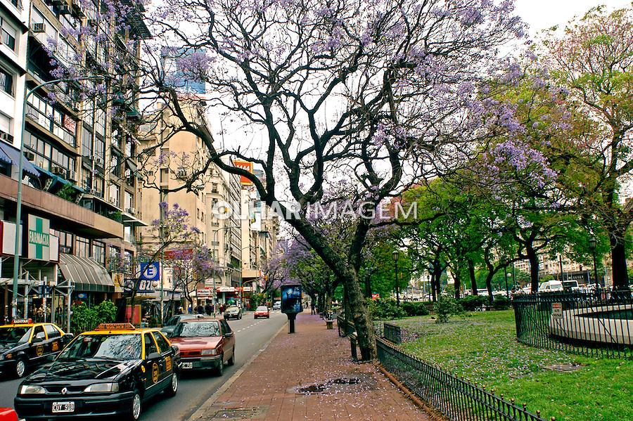 Rua arborizada em Buenos Aires, Argentina. 2004. Foto de Thais Falcão.