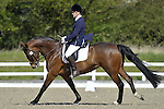 29/04/2016 - Class 2 - British Dressage (BD) - Brook Farm Training Centre