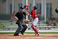 Boston Red Sox catcher Austin Rei (28) looks for a pop up as umpire Reed Basner looks on during an instructional league game against the Minnesota Twins on September 26, 2015 at CenturyLink Sports Complex in Fort Myers, Florida.  (Mike Janes/Four Seam Images)