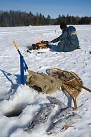 Amérique/Amérique du Nord/Canada/Québec/Mauricie/Saint-Alexis-des-Monts:  A la Pourvoirie du Lac Blanc Gaston le trappeur à la pêche blanche aux truites du lac