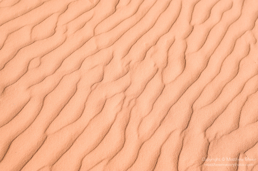 Coral Pink Sand Dunes State Park, Kanab, Utah; ripple patterns in the sand