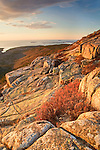 View of the Atlantic Ocean from Cadillac Mountain at Acadia National Park, Maine