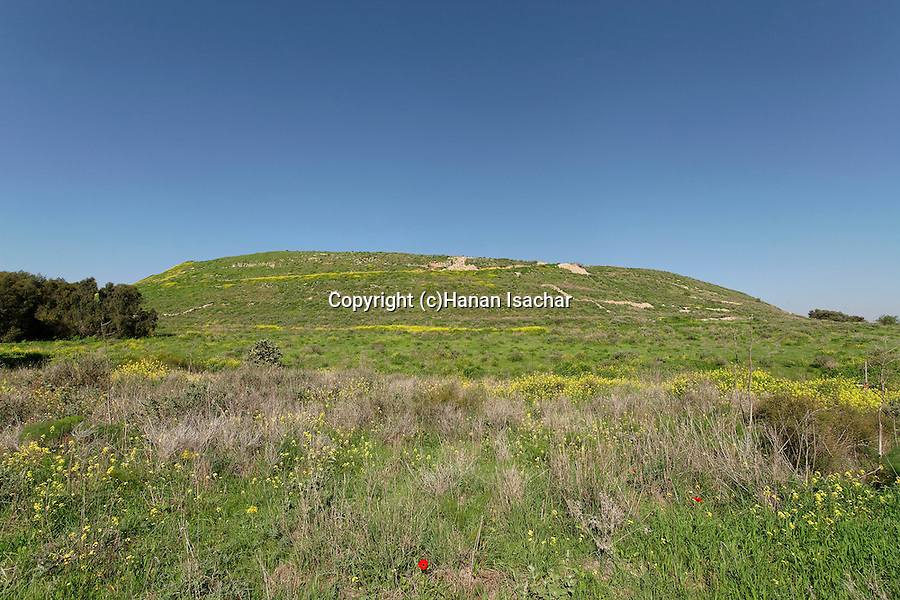 Israel, the Shephelah. A view of the eastern side of Tel Lachish the site of the biblical Lachish