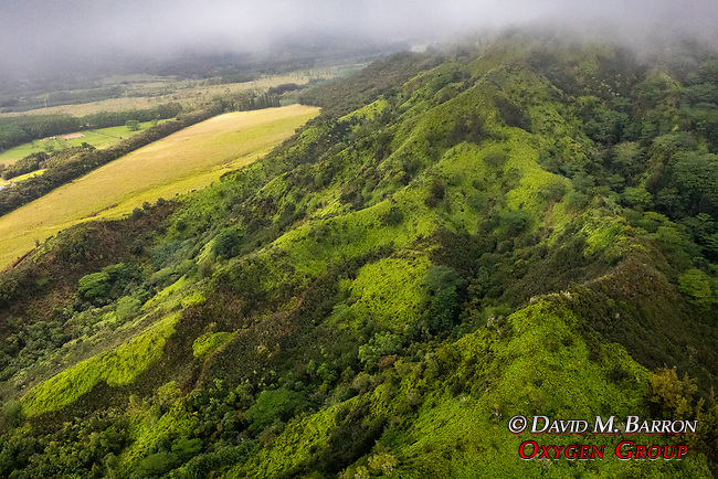 Jack Harter Doors Off Helicopter Tour Of Wiamea Canyon & The Napaoli Coast