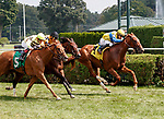 Red Knight (no. 4) wins Race 5, Aug. 25, 2018 at the Saratoga Race Course, Saratoga Springs, NY.  Ridden by  Junior Alvarado, and trained by William Mott, Red Knight finished a neck in front of Classic Covey (No. 5).  (Bruce Dudek/Eclipse Sportswire)