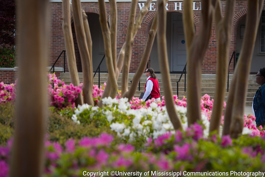 Blooms. Photo by Kevin Bain/University Communications Photography