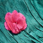 Pink Flower Blue Silk 02 - Turquoise blue layered silk shawl and pink silk flower.