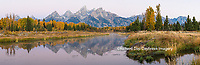 67545-08908 Sunrise and fall color at Schwabacher Bend Landing, Grand Teton National Park, WY