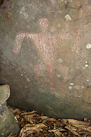 Hawaiian Petroglyph Birth Scene, Nuuanu, Honolulu, Oahu, Hawaii