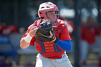 Philadelphia Phillies catcher Mitchell Edwards (19) throws down to second base in between innings during an Instructional League game against the Toronto Blue Jays on September 27, 2019 at Englebert Complex in Dunedin, Florida.  (Mike Janes/Four Seam Images)