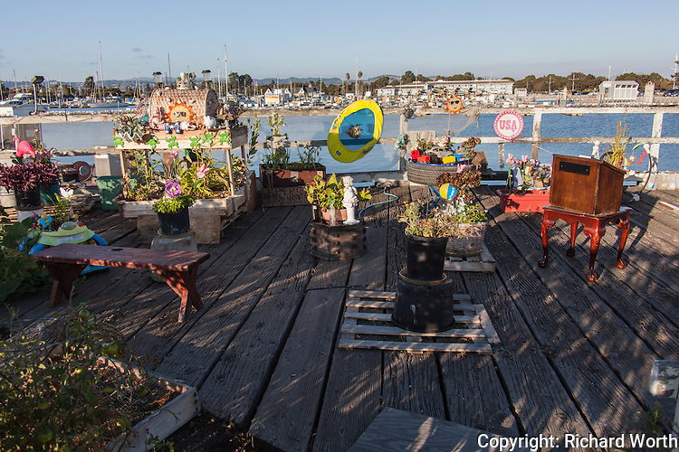 Pots with plants and planters with more plants.  Decorations and curios.  The one-man garden creation on the closed observation deck at the San Leandro Marina, San Leandro, California.