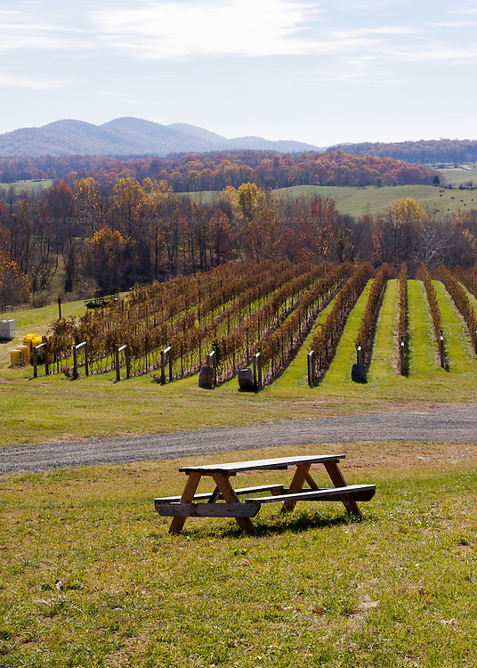 A picnic table at Delaplane Cellars offers a spectacular view of the vineyards and valley below.