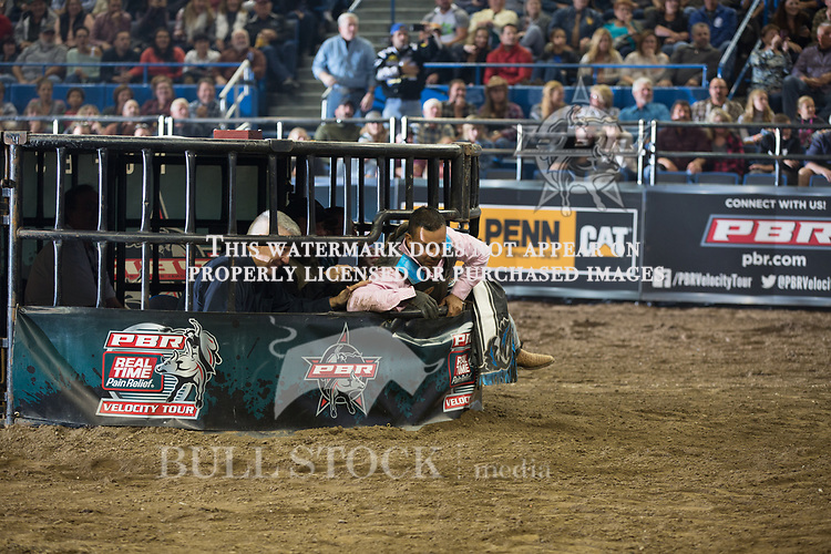 Leonardo Teo attempts to ride Good Eye ( Mike Miller Bucking Bulls ) during the first round of the PBR Real Time Pain Relief Velocity Tour event in Hartford, CT - Photo by Andre Silva