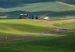 Whitman County, WA<br /> Curving road leads to a farm with red barn nested in the rolloning green hills of the Palouse in eastern Washington