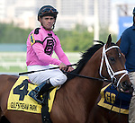 Racing - 2008 - 2014, for the Daily Racing Form