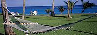 "Iles Bahamas / New Providence et Paradise Island / Nassau: Hotel ""One & Only Océan Club"" hamac dans le parc en fond l'océan"