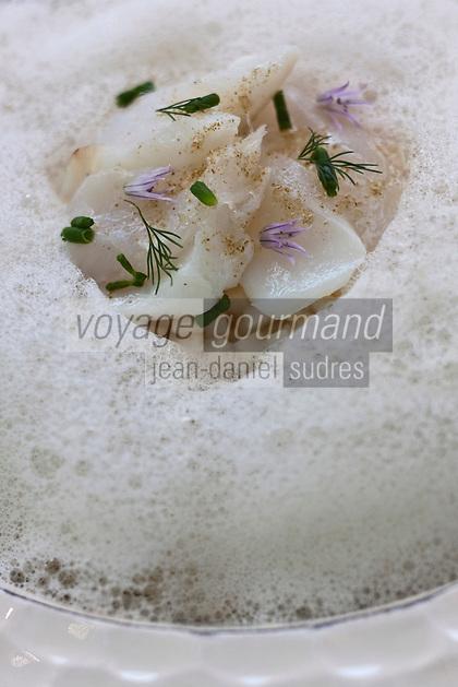 Europe/France/Languedoc-Roussillon/30/Gard/Nimes: Effeuillé de morue légèrement fumée, fondue de fenouil aux agrumes  recette de Michel Kayser  du Restaurant: Alexandre