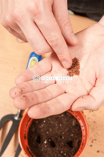 Young person with special needs learning to sow seeds