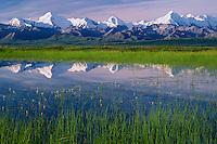 Tundra pond reflects Mount Brooks and Mount Mather<br />  from Wonder Lake Road<br /> Denali National Park<br /> Alaskan Range,  Alaska