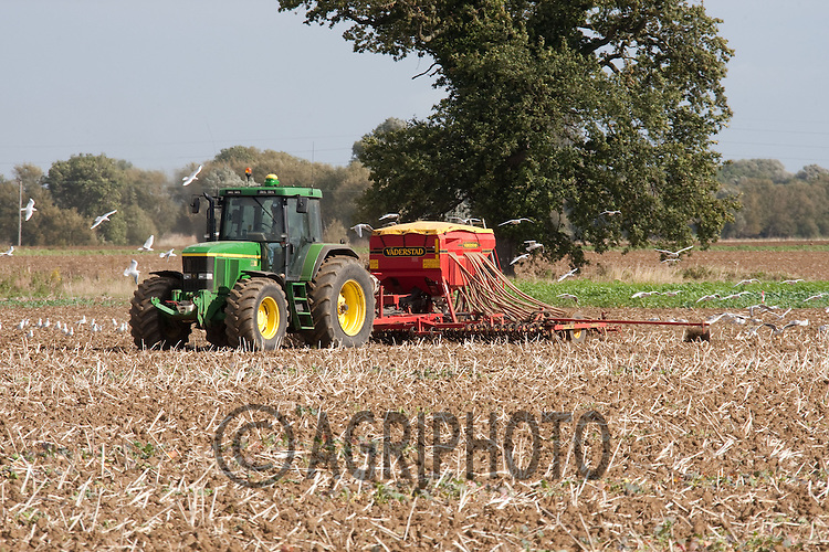 Drilling wheat following oil seed rape..Picture by Tim Scrivener date taken 2nd October 2012.mobile 07850 303986 e-mail tim@agriphoto.com.....covering agriculture in The United Kingdom.....