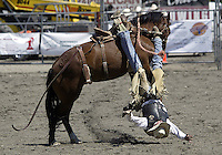 Saddle Bronc Riding Pro Rodeo