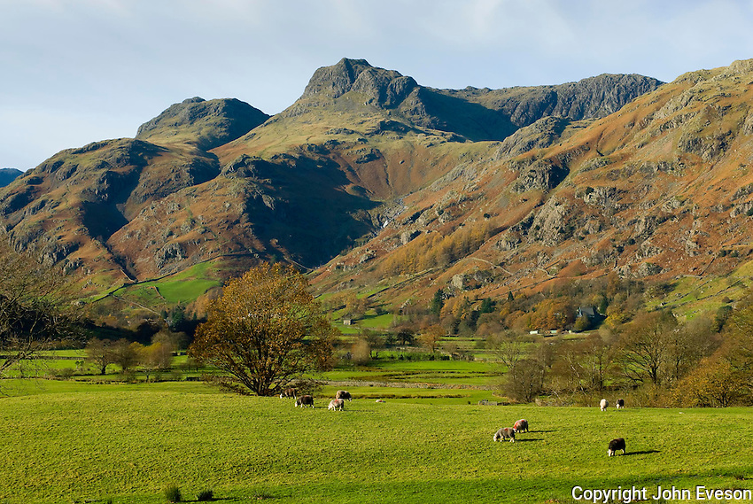 View at Great Langdale, Cumbria....Copyright..John Eveson, Dinkling Green Farm, Whitewell, Clitheroe, Lancashire. BB7 3BN.01995 61280. 07973 482705.j.r.eveson@btinternet.com.www.johneveson.com
