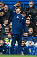 Spurs Manager Mauricio Pochettino during the Premier League match between Chelsea and Tottenham Hotspur at Stamford Bridge, London, England on 1 April 2018. Photo by Andy Rowland.