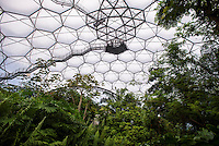 The observation platform in the Rainforest Biome at the Eden Project, St. Austell, Cornwall.