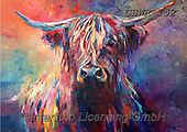 Simon, REALISTIC ANIMALS, REALISTISCHE TIERE, ANIMALES REALISTICOS, innovative, paintings+++++A_SueG_HighlandCow,GBWR152,#a#, EVERYDAY ,cow,bull