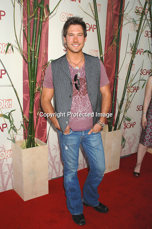 "James Stevenson..arriving at The SOAPnet's ""Night Before Party"" for the ..nominees of the 2007 Daytime Emmy Awards on            June 14, 2007 at Boulevard3 in Hollywood, California...Robin Platzer, Twin Images........212-935-0770"