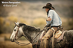 A photo of a cowboy resting on his horse. Cowboy Photos, riding,roping,horseback