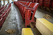 Cleaning crews swept up peanut shells at Dorton Arena in Raleigh, North Carolina on Tuesday, November 25, 2014. (Justin Cook)