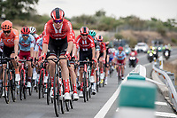 Nikias Arndt (DEU/Sunweb)<br /> <br /> Stage 19: Ávila to Toledo (165km)<br /> La Vuelta 2019<br /> <br /> ©kramon