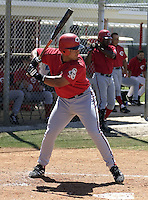March 31, 2004:  Dane Sardinha of the Cincinnati Reds organization during Spring Training at Ed Smith Stadium in Sarasota, FL.  Photo copyright Mike Janes/Four Seam Images