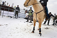 Horses and riders prepare to race at the Whitefish Skijoring World Championship event in Whitefish, Montana, USA.  Skijoring is a competitive sport in which a person on skis navigates an obstacle course while being pulled behind a galloping horse.